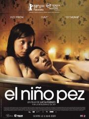 cine,argentina,festival filmar