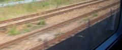 NV-IMP459.jpg