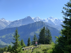 Suiza, trenes, montaña, paseos